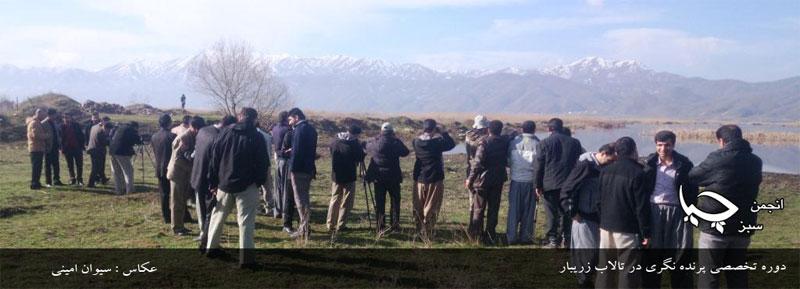 برگزاری دوره تخصصی پرنده نگری در تالاب زریبار