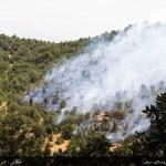 گزارش ویدیویی آتش سوزی روستای سیف