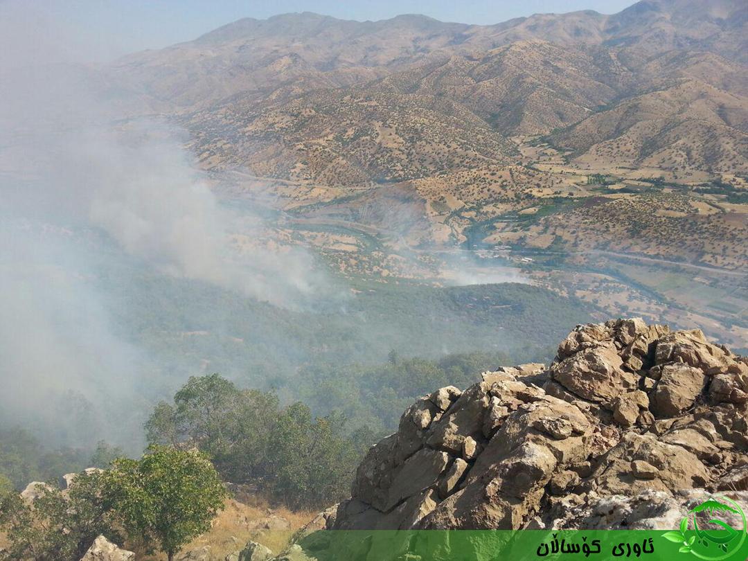 بحران جنگلهای زاگرس؛ با تأکید بر آتش زدن عمدی
