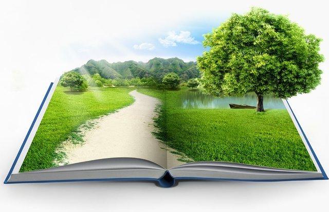 دولت و محیط زیست