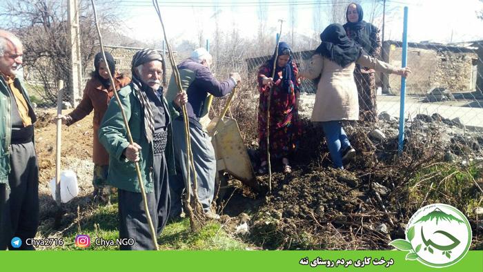 درخت کاری  توسط مردم روستای ننه