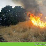 آتشسوزی جنگل – ئهسراوا