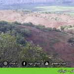تخریب جنگل –  لنجآباد