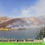 گزارش آتش سوزی جنگل های روستای چنارە